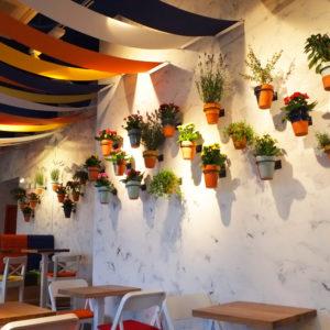 Doniczki, Restauracja NaTalerzach